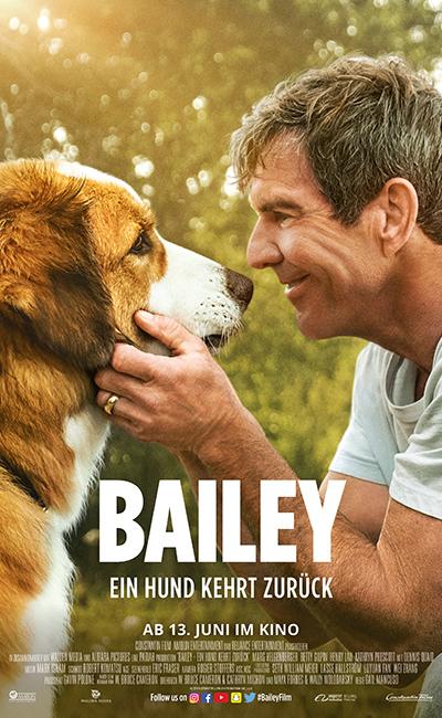 Bailey - Ein Hund kehrt zurück (2019)